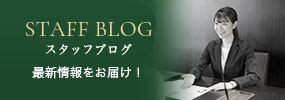 STAFF BLOG スタッフブログ 最新情報をお届け!